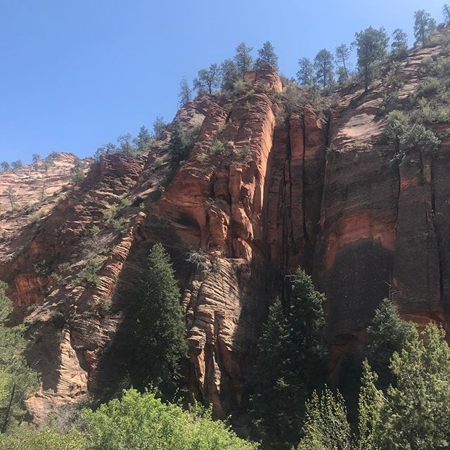 Canyons and rock formations everywhere. The scope and size of the rocks are so imense pictures don't even come close to capturing it. @zionnps was lovely and the drive through the canyons to Arizona was a highlight. #weeklydish #stephaniesdish #cartrip #camping #zionnationalpark
