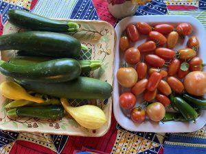 Freshly Picked Garden Vegetables